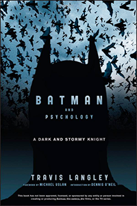 Batman A Dark and Stormy Knight Book